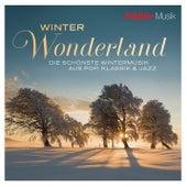 Brigitte - Winter Wonderland von Various Artists