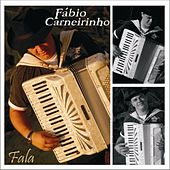 Fala de Fabio Carneirinho