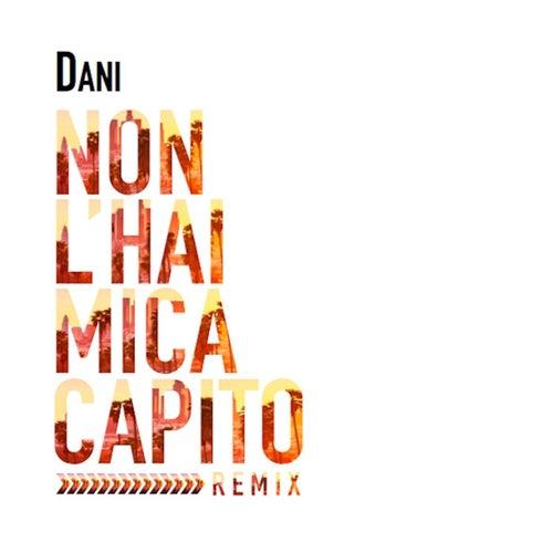 Non l'hai mica capito (Remix) by Dani