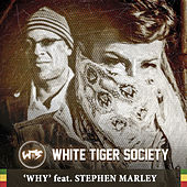 Why by White Tiger Society