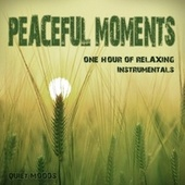 Peaceful Moments (One Hour of Relaxing Instrumentals) de Various Artists