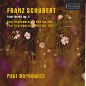 Franz Schubert: Piano Works, Vol. 8 by Paul Berkowitz