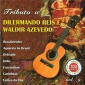Tributo a Dilermano Reis e Waldir Azevedo, Vol. 9 de Various Artists