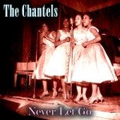 Never Let Go de The Chantels