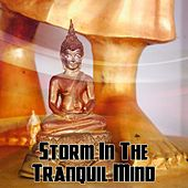 Storm In The Tranquil Mind by Thunderstorm