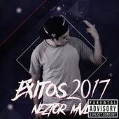 Éxitos 2017 de Neztor MVL
