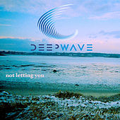 Not Letting You - Single by Deep Wave