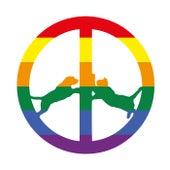 Rainbow Edition de Hype Williams