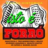Isto É Forró von Various Artists