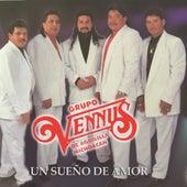 Un Sueno De Amor by Grupo Vennus