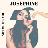 Not Me It's You by Josephine