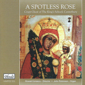 A Spotless Rose by Various Artists