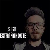 Sigo Extrañandote by Fer Palacio