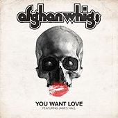 You Want Love (feat. James Hall) by Afghan Whigs