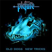 Old Dogs New Tricks by The Picture