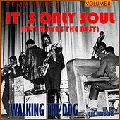 It's Only Soul (But Maybe the Best), Vol. 2 - Walking the Dog... and More Hits (Remastered) by Various Artists