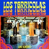 Un Sueño by Los Terricolas