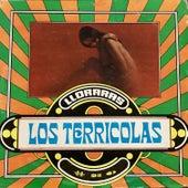 Llorarás by Los Terricolas