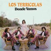 Dónde Vamos by Los Terricolas