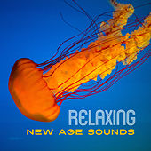 Relaxing New Age Sounds – Music to Relax, New Age Calm Melodies, Sounds for Better Feelings by Relaxed Piano Music