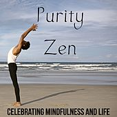 Purity Zen: Celebrating Mindfulness and Life With the Best New Age Music by Various Artists