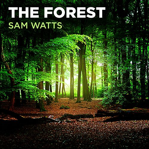 The Forest by Sam Watts