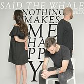 Nothing Makes Me Happy by Said The Whale