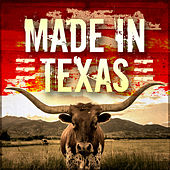 Made in Texas de Various Artists