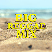 Big Reggae Mix von Various Artists