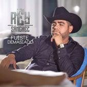 Fuiste Demasiado by Rey Sanchez