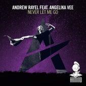 Never Let Me Go von Andrew Rayel