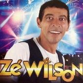 Zé Wilson de Zé Wilson