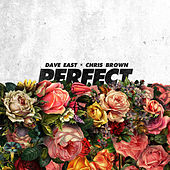 Perfect (Feat. Chris Brown) de Dave East