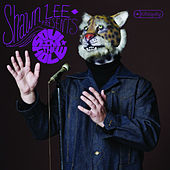 Soul in the Hole by Shawn Lee's Ping Pong Orchestra