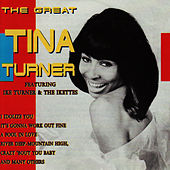 The Great Tina Turner by Tina Turner
