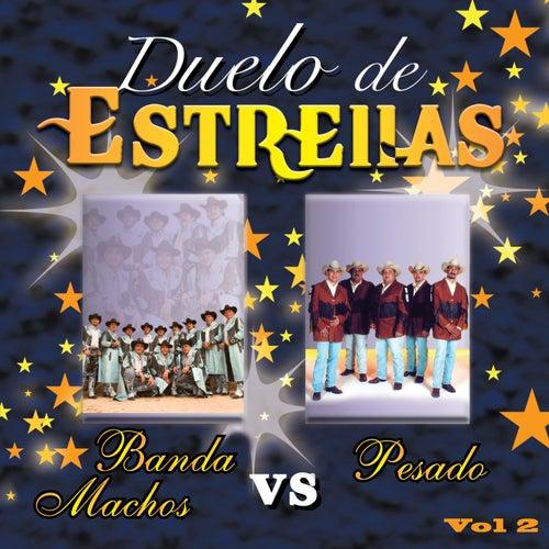 Pesado vs Banda Machos Vol. 2 by Various Artists