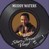 Stars from Vinyl de Muddy Waters