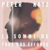 La somme de tous nos efforts by Peter Katz