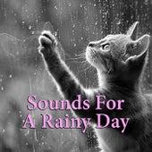 Sounds For A Rainy Day de Various Artists