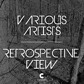 Retrospective View by Various Artists