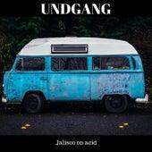 Jalisco on Acid di Undgang