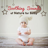 Soothing Sounds of Nature for Baby – Restful Sleep, Music to Calm Down, Cradle Songs, Lullabies at Night, Relax, Bedtime by Baby Sleep Sleep