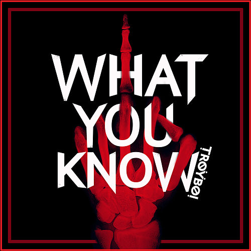 What You Know by TroyBoi