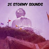 25 Stormy Sounds by Thunderstorm