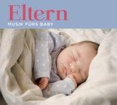 Eltern-Musik fürs Baby von Various Artists