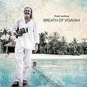 Breath of Voavah by Various Artists