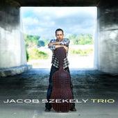 Jacob Szekely Trio by Jacob Szekely Trio
