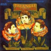 Triangle de The Beau Brummels