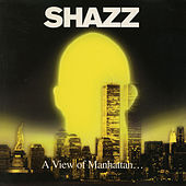 A View Of Manhattan von Shazz