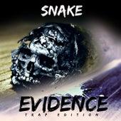 Evidence by Snake
